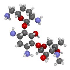 Gentamicin antibiotic drug (aminoglycoside class)
