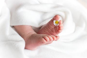 Babyfüsse