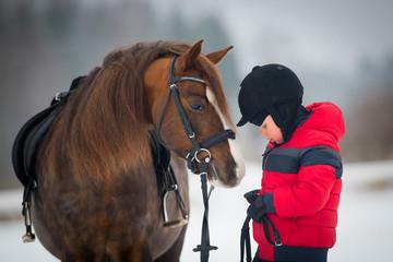Horse and boy - child riding horseback