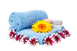 blue towel, nail polish, gerbera