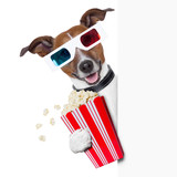 cinema dog