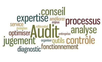Nuage de mots : Audit