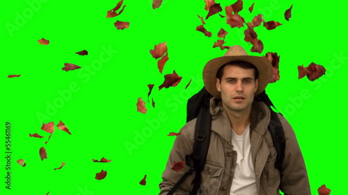 Man with a hat walking under leaves falling on green screen