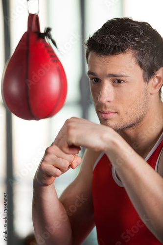 Boxer. Young boxer training at the punching bag