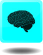 Brain Icon Web Knopf Hirn