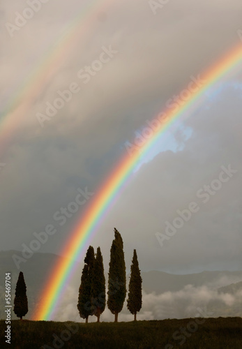 Generic Tuscan background with cypress trees and double rainbow
