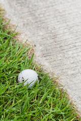 Golf ball near the cart path