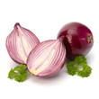 Red sliced onion and fresh parsley still life