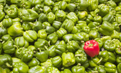Red bell pepper among green ones