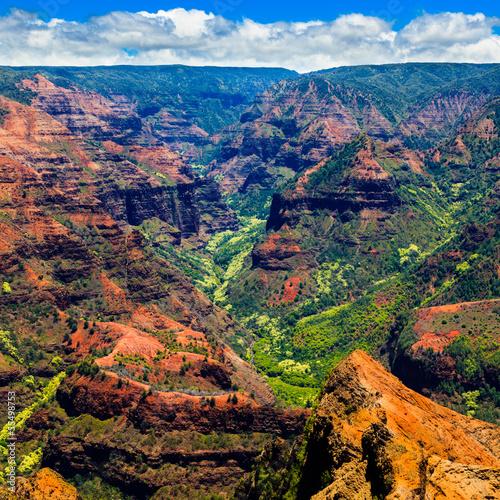Tuinposter Canyon Waimea Canyon in Kauai