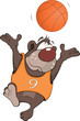 Bear the basketball player cartoon