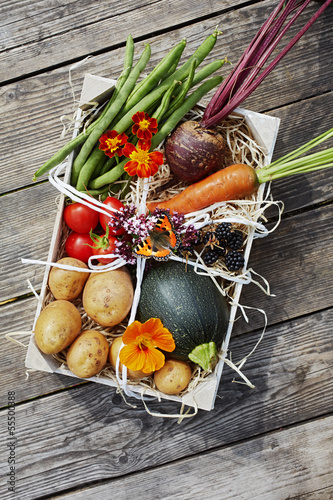 Fresh vegetables in a box with butterfly
