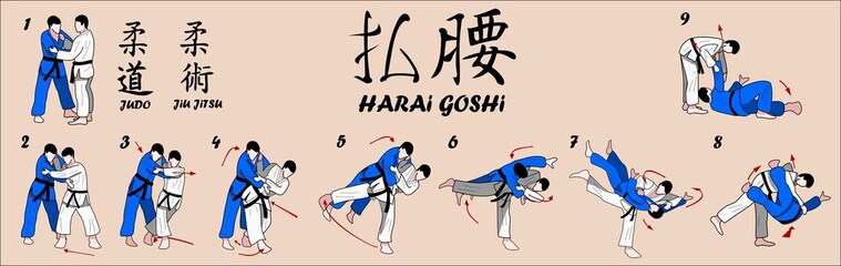 Judo Martial art technique