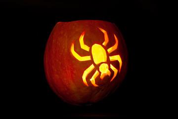 Spider Halloween pumpkin