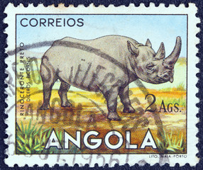 Black Rhinoceros (Angola 1953)