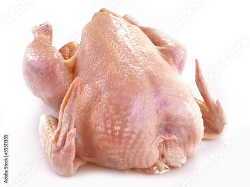 fresh chicken