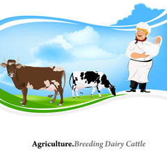 Agriculture.Breeding dairy Cattle.Vector background