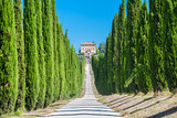 Fototapety Tuscany countryside, typical villa with alley and cypresses
