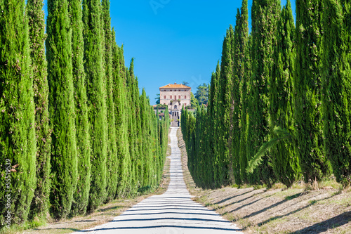 Tuscany countryside, typical villa with alley and cypresses