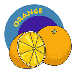 colorful drawn fruit label - orange, vector illustration