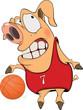 Pig the basketball player cartoon