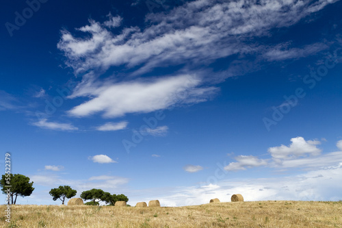 panorma with round bales is blue sky with clouds