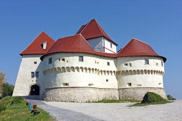 Veliki Tabor, castle