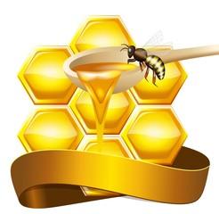 Медовые соты, векторная иллюстрация