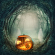 Pumpkin in dark forest