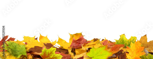 canvas print picture Herbst 71