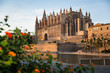canvas print picture - palma cathedral