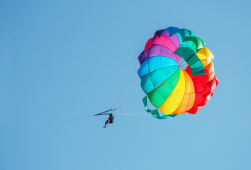 One male parasailing