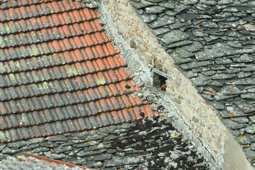 Old roof tiles background closeup