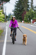 bike ride with a dog