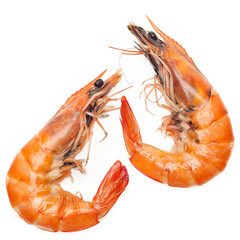 Close up shrimp isolated on white background