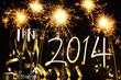 Celebration the new year 2014