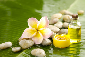 Massage oil and Plumeria flower and stones on green banana leaf