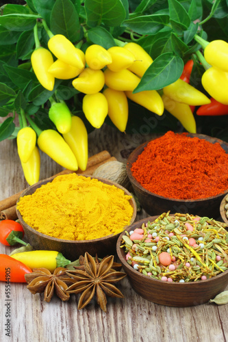 Selection of Indian spices, close up