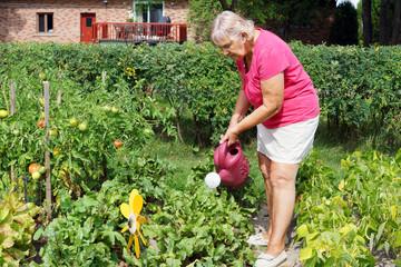 Senior woman watering garden