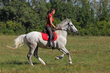 Girl on back of a thoroughbred stallion galloping in a meadow