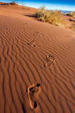 footprints desert sky