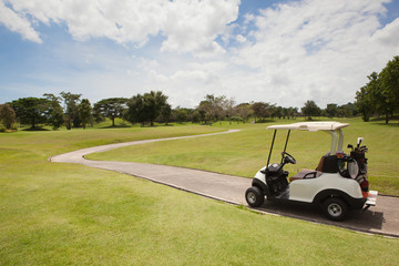 Golf Cart on the Part in Golf Course