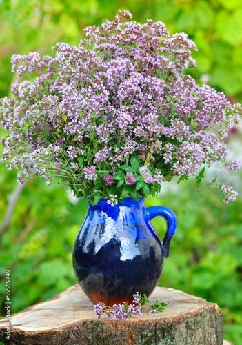 Beautiful bouquet of fresh oregano (Origanum vulgare) outdoors