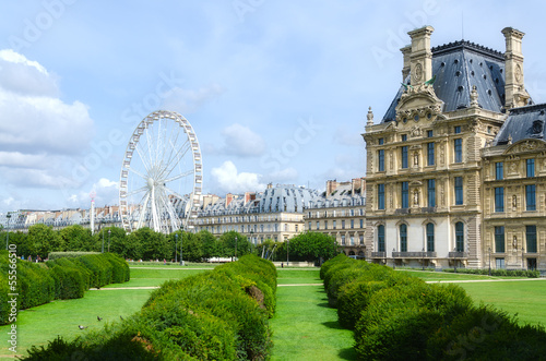Tuileries garden side, Paris