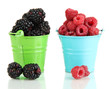 Ripe raspberries and blackberries in pail  isolated on white