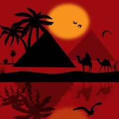 Bedouin camel caravan