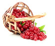 Fresh cornel berries in wicker basket, isolated on white