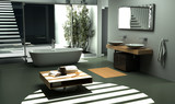 Modern industrial design Bathroom interior