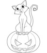 Halloween Cat on pumpkin coloring page