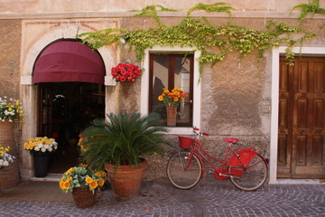 fiorista con bicicletta rossa